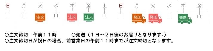 日本ケアミール 注文締と発送について